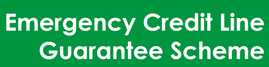 Detailing the Emergency Credit Line Guarantee Scheme (ECLGS)
